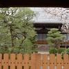 佛陀寺の桜と阿弥陀寺の桜。