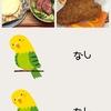 【35w5d】17/06/17の食事