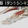 膝の痛みの治し方