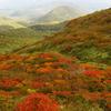 ◆Mさんより「錦秋の栗駒山」