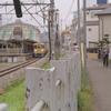 Photo No.288 / レイズド・バイ・ウルブス 第5話