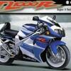 外道的バイク選択肢 TL1000R 先入観でいっぱいのバイクでした