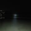 2020年4月16日(木)23:00~24:00伏木国分浜でのホタルイカ掬い の結果ご報告