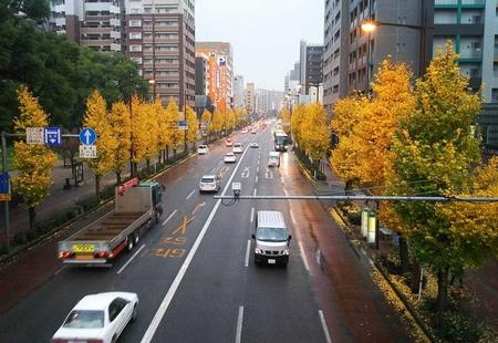 私にとっての熊本は「なんだか居心地がいい」街