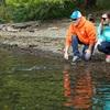 """魚のスレを科学する2 魚は""""釣られた経験""""を記憶している"""