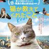 つくづく不思議な生き物のドキュメンタリー映画『猫が教えてくれたこと』