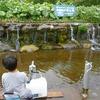 羊蹄山の湧き水と黄金温泉へ