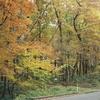 秋から春のフィルム写真