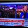 アメリカが「トランプランド」になった日 --わたしの大統領選