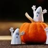 ハロウィンって知ってますか?かぼちゃや仮装の意味について。