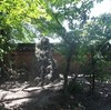 「日中不戦の植樹」の碑 戒壇院