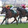 競馬初心者必見☆馬券予想🔥〜福島牝馬ステークス〜牝馬ハンデ重賞に加えて今年は新潟開催と荒れる要素満々ですが‥‥〜