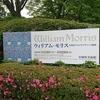 宮城県美術館 ウイリアムモリス展に行ってみた