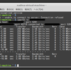 VMWarePlayer上のLinuxのネットワーク転送速度が遅い 続き