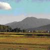 九州でおすすめ。初心者向け日帰り登山。あなたはどこに登りますか?