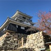 浜松城の紅葉