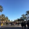 4月21日(日)はイースターで、この前後の期間をスペイン語圏ではセマナサンタと言います。
