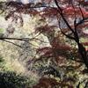 鎌倉(石切り場)