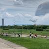 庄内緑地公園が元気になっていました!