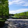 昭和記念公園のコスモス 2