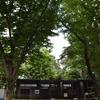 木陰が涼しい夢見ヶ崎動物公園