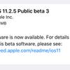 iOS11.2.5 Public Beta3がリリース【更新:カメラのシャッター音が消音可能に】