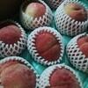 桃の皮がつるりんとむけないなら普通に包丁を使うしかない