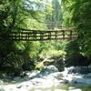 日本3大秘境の一つ「祖谷渓谷」にあるキャンプ村