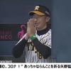 【悲報】イケるで、夢の100敗 !!