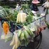 バンコク在住,わが家のグローサリーショッピング事情