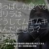 991食目「葉っぱしか食べないゴリラはどうしてムキムキなんだと思う?(再考篇)」草食のゴリラが筋肉質な理由を再び考えてみる★次へ続く日記第6話★完結