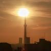 天気と空と:2020-02-11〜02-15