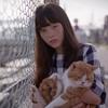 ショートフィルム「猫、かえるCat's Home」