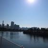 師走の東京の風景  その1(浜離宮)