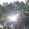 昨日のヘブン 20121102 すりばち山