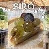 【SIRO カフェ】山の中のケーキ屋さん★ドッグランもあるよ【多肉植物専門店leaf】