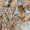 土壌診断のための土採集