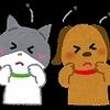 愛猫&同居人の防ダニ対策~2020'2nd&1st×2