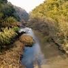 矢作古川分岐点と龍宮伝説残る小島龍宮社を訪ねて(西尾市)