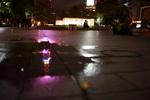 スナップに最高、マクロもこなす単焦点! タムロンのSP 35mm F/1.8で夜の札幌の街並みをたっぷり撮影。