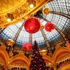 #217 一生で一度は見てみたい、パリのクリスマス事情について聞いてみた。