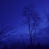 【74】『青が 散る』宮本 輝 著 《上・下巻》