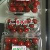 和歌山県産のプチトマト