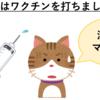 地域猫では結構ある?猫白血病ウイルス(FeLV)感染症について③ ~診断・予防・管理・治療~