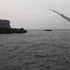 磯釣り (生月・鯨島)