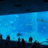 2020年12月 沖縄【4/4】「オリオンモトブ」泊 美ら海水族館も近く、かけ流しの温泉が楽しめるリゾートホテル