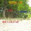 【狂犬通信 Vol.51】上礒部土塁
