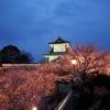 石川門のお花見「ライトアップ」