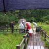 雨の八竜湿地