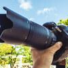 Nikon D4 で撮る東山動物園のかわいい動物たち【作例あり】